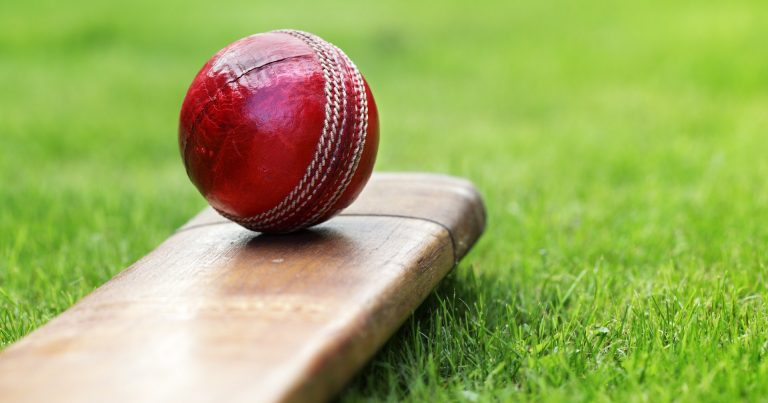 Golden Tips for Playing a Fantasy Cricket Game Online In India