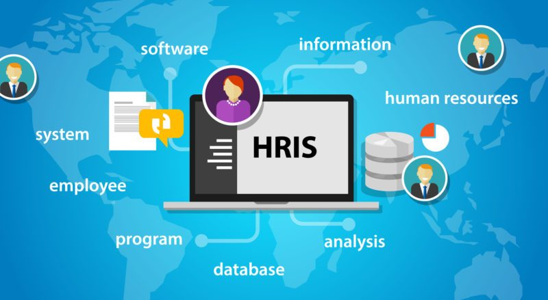 How to choose the best HRIS technology according to the company needs
